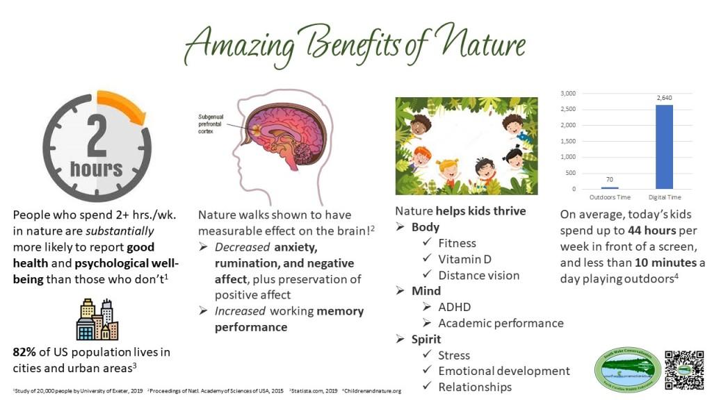 Amazing benefits of Nature display